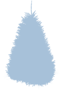 Содержание елки в горшке