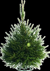 купить русскую новогоднюю елку