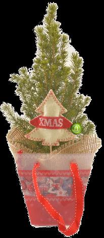 Подарочная елка (h-30 cм)