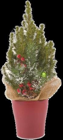 Подарочная елка (h-40 cм)